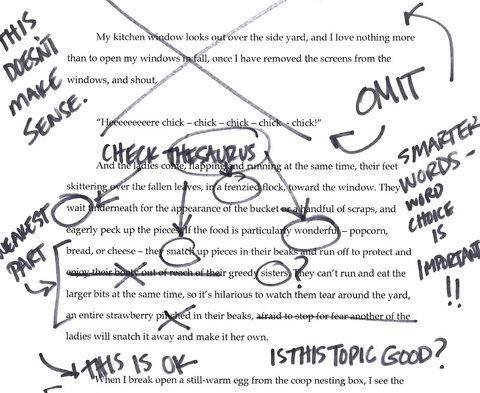 Northwestern university essay